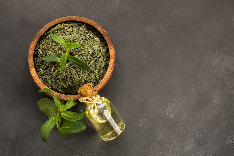 Spices of Turkish cuisine - mint
