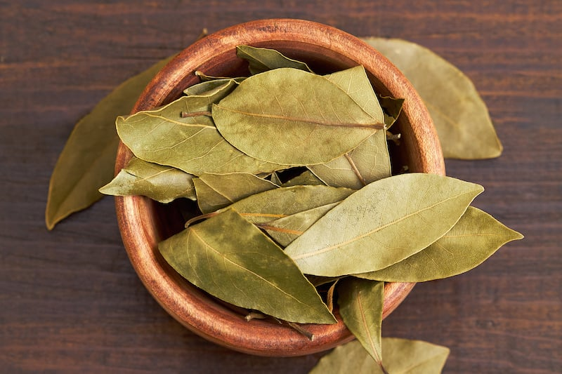 Spices of Turkish cuisine - bay leaf